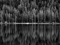 Landscapes - Black and White